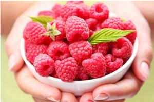 raspberry ketone max kaufen